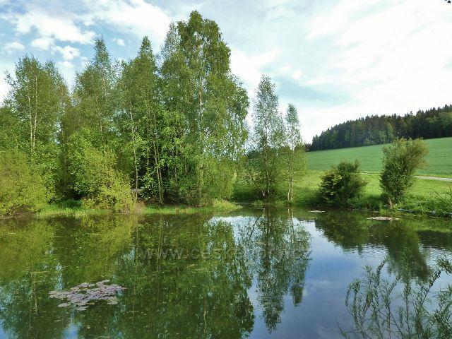 Jamné nad Orlicí - horní rybníček u cesty do Orliček