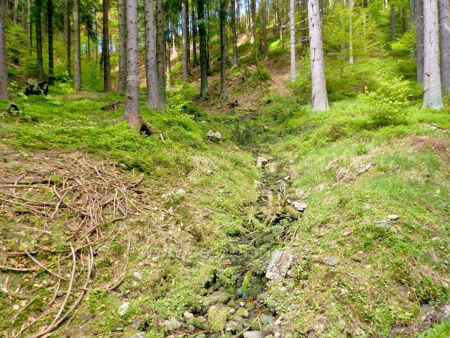 Petříkov- jeden z přítoků bezejmenného potoka, který se vlévá v Petříkově do Branné