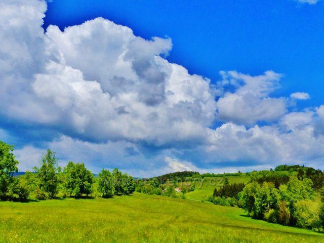 Pastviny mezi Kutným vrchem a Holým vrchem