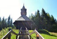 Kaple sv. Hedviky, Vidly