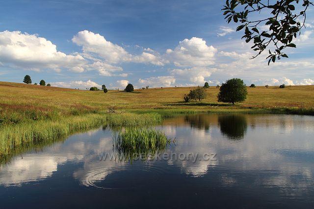 Rybník v býv. Pastvinách