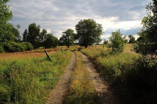 Pastviny u Pleše