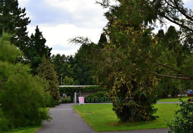 Arboretum Nový Dvůr u Opavy -