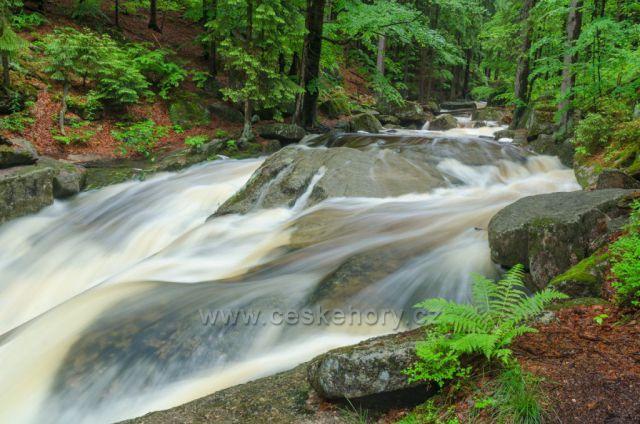Letní vody říčky Jedlová