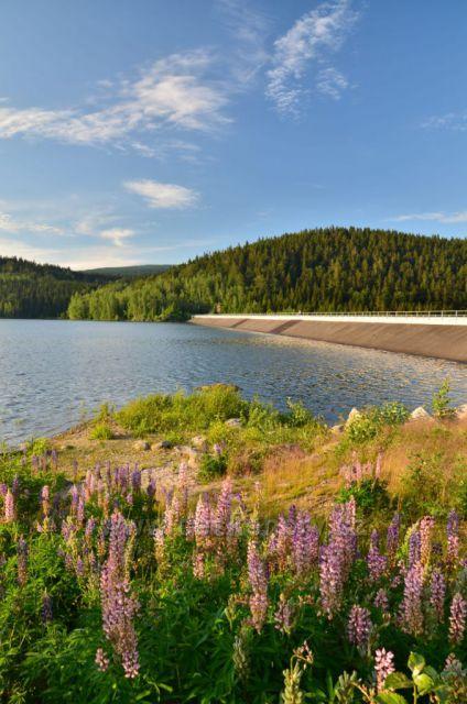 Letní Josefodolská přehrada