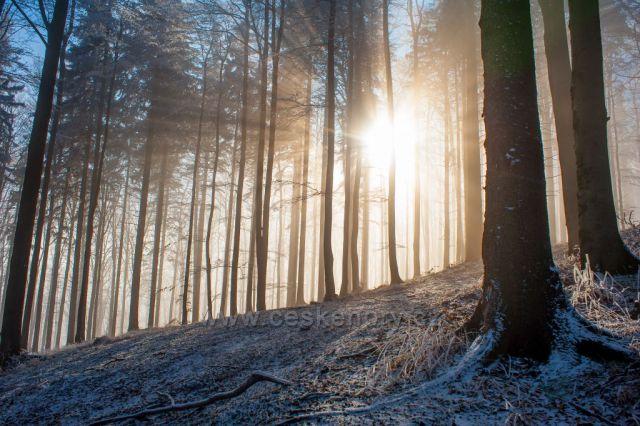Slunce a mráz - pod Velkou stolovou, Beskydy