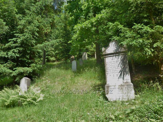 Rokytnice v Orlických horách - židovský hřbitov