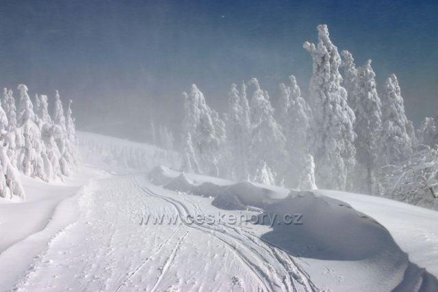 sněhovice na Lysé
