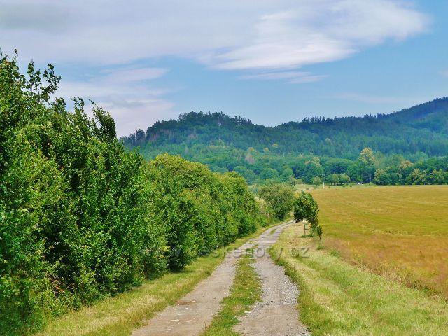 """Bludov - cesta k Bludovečku po zelené TZ. V popředí vystupuje vrch """"Na Starém Zámku"""" (460 m.n.m.)"""