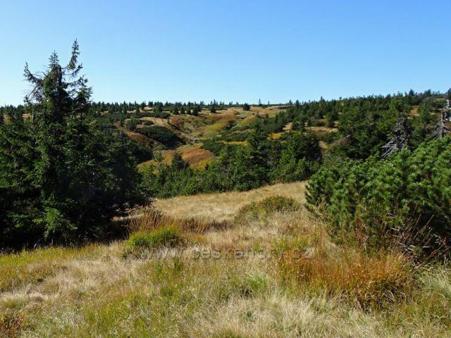 Západní Krkonoše-pohled k prameni Labe z cesty ke Sněžným jamám...
