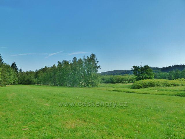 Přírodní rezervace Meandry Svratky u Milov