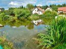 Sněžné - Barvířův rybník