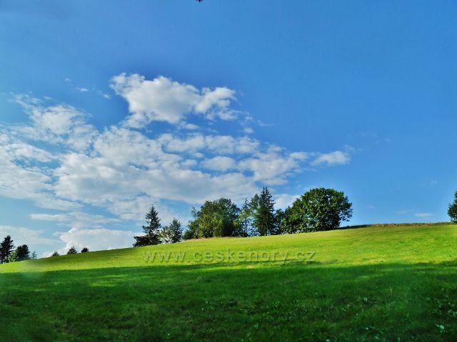 Svratka - pastvina u cesty k loveckému zámečku Karlštejn