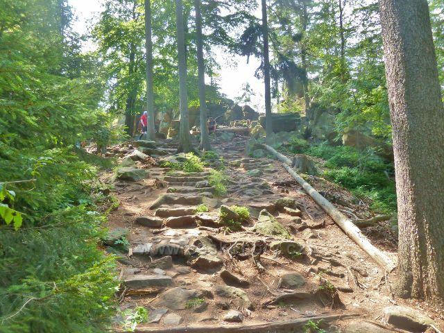 Křižánky - odbočka po modré TZ ke skalní vyhlídce Devět skal