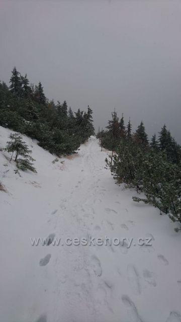 Svozova cesta od Vrbatovy boudy v půlce října