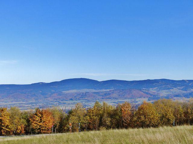 Petrovičky - pohled z úbočí vrchu Adam na polskou stranu masivu Králického Sněžníku. V popředí je patrný hřeben vrchu Urwista (794 m.n.m.)