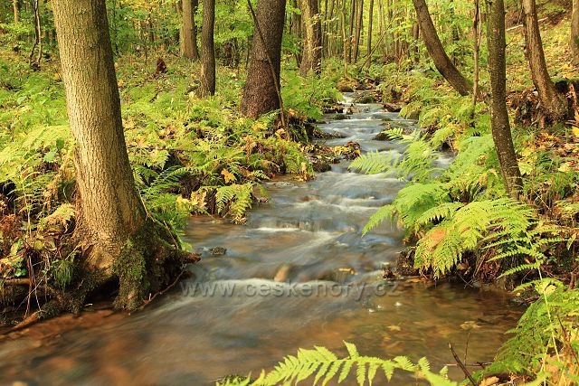 Lomský potok