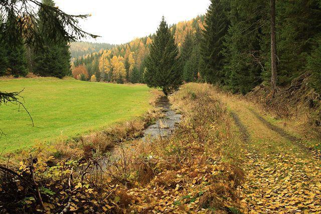 Údolí Načetínského potoka