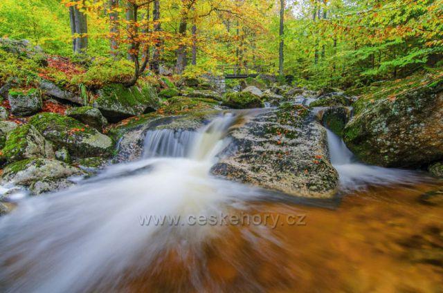 Hájený potok v barvách podzimu.