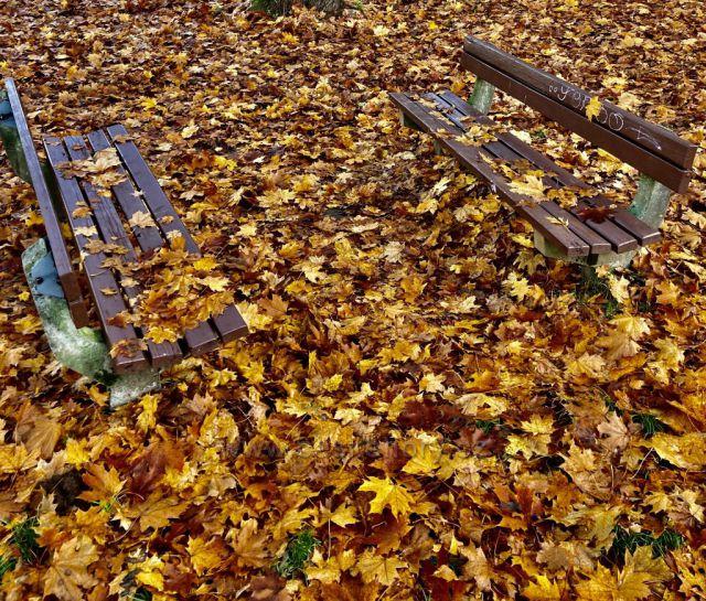 Podzimni lavičky