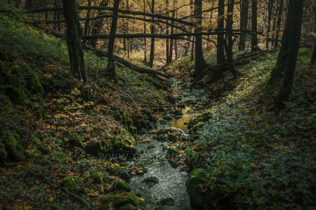 Ochozský potok