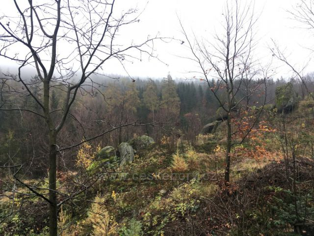 Cesta z Liberecké výšiny
