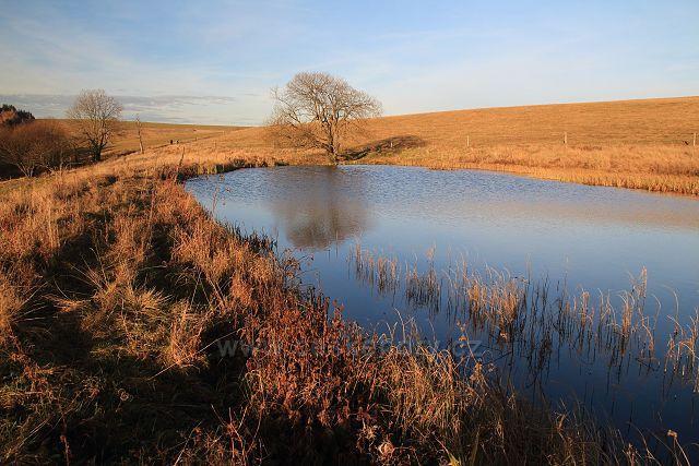 Jeden z rybníků v Pastvinách
