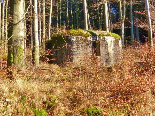 Orlické hory - bunkr(řopík) C/99/A-120 na úpatí Komářího vrchu