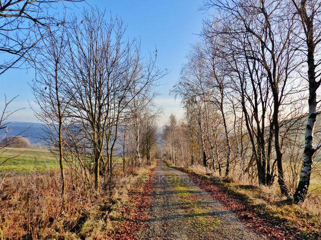 Vlčkovice - cesta po červené TZ přes Kostelní vrch (688 m.n.m.) na Adam