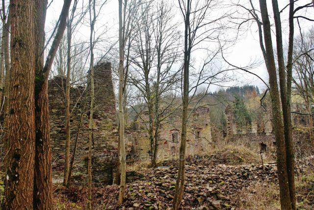 Niemojów - ruiny renesančního loveckého zámku vystavěného kolem roku 1576.