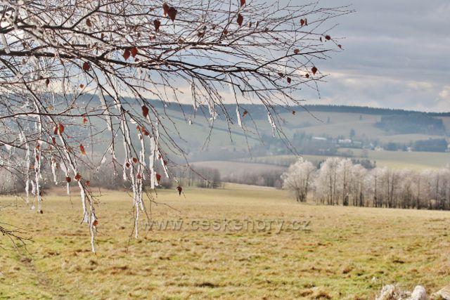 Niemojów - pohled od lesa nad pastvinou k Bartošovicím v O.h.