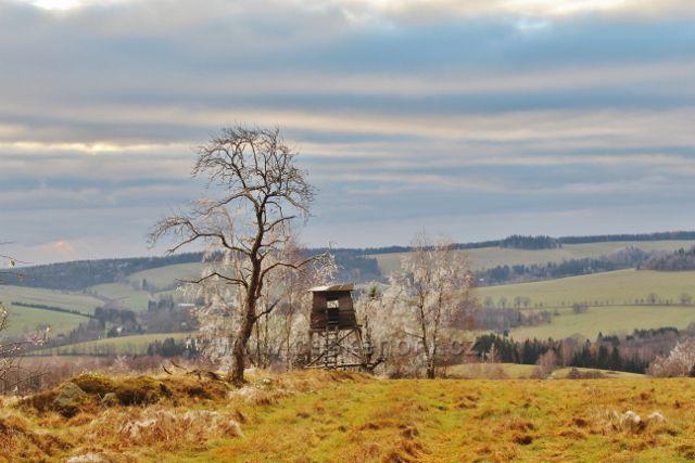 Niemojów - pohled z okraje lesa na horní část Bartošovic v O.h.