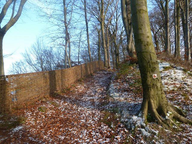 Žampach - plot vypletený proutím ohraničuje areál zříceniny hradu Žampach