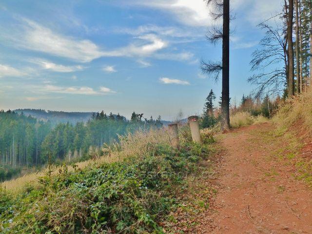 Cesta po červené TZ po úbočí vrchu Žampach
