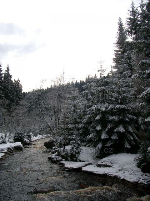 Černý potok - Kühnhaida