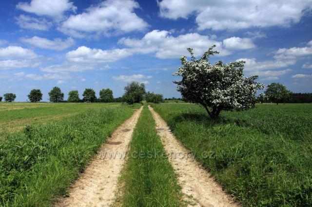 Cesta Drahanskou vrchovinou