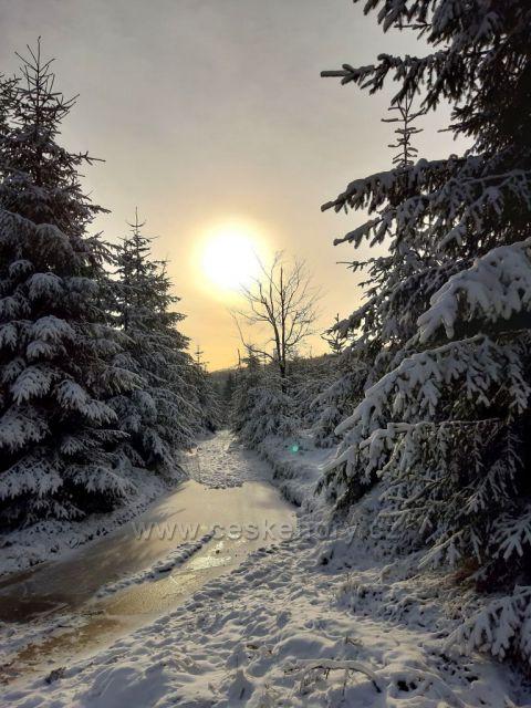 cesta z Moldavy