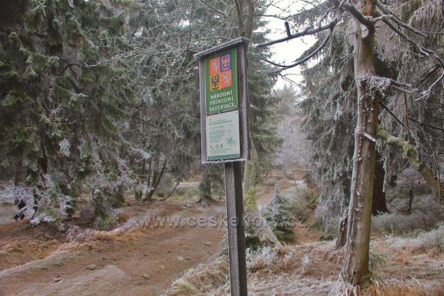 Šerlich - NPR Bukačka, botanická zahrada Orlických hor