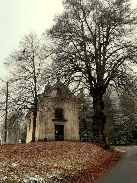 Kaple Patronů Čech s chráněnou lípou