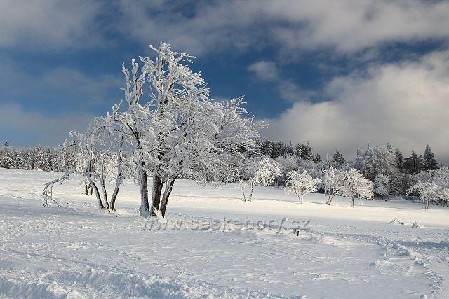 Zima u Rudolic
