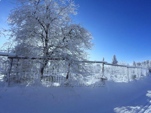 Zima na Dlouhé Louce