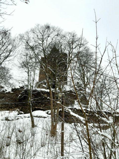 Osek, zřícenina hradu