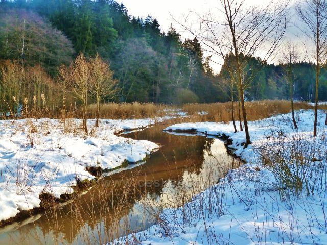 Písečná - přítok Potočnice do rybníku v Šušku