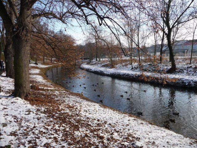 Zimní řeka Bílina