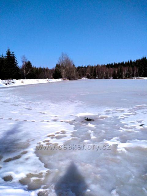 Zamrzlý rudolický rybník