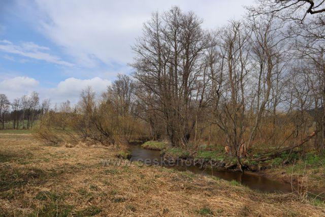 Meandry Svratky u Milov