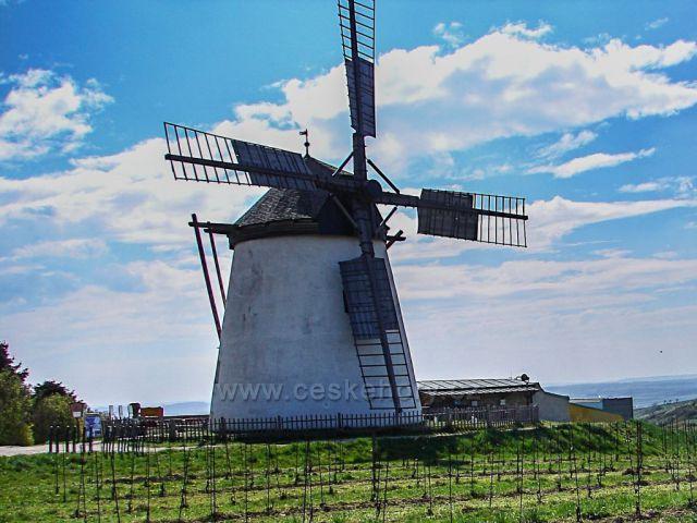 Windműhle - větrný mlýn a rozlehlé vinice