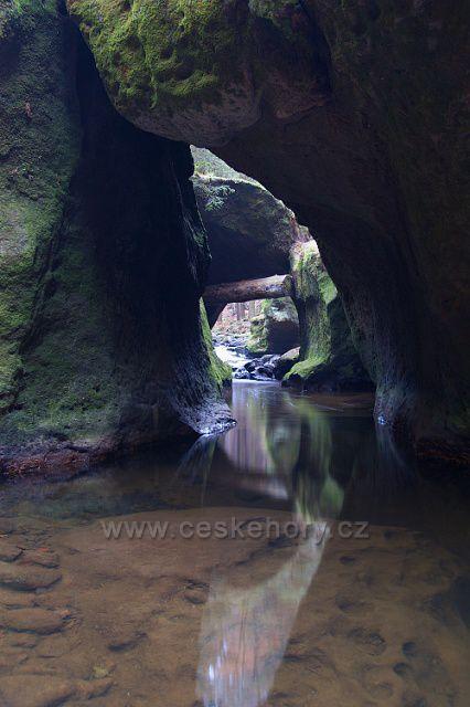 Křinice u jeskyně Vinný sklep.