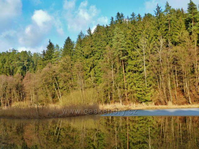 Písečná - rybník v Šušku