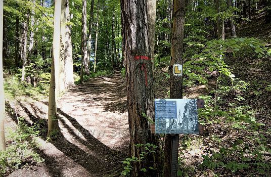 Chodnik na hrad Blatnica